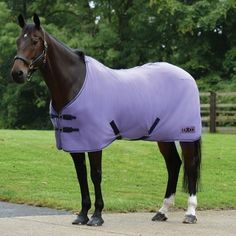 Shop our great range of Sheets and Coolers. Free delivery on all orders over and free UK returns at Derby House. Horse Fly, Horse Tack, Horse Stables, Cute Horses, Beautiful Horses, Saddle Pads, Neck Coolers, Horse Shop, Cool Rugs