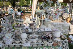 Sweet Willliam Market