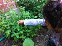 kiddie gardening activities