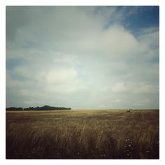 Free  #iphone #iphoneography #field #clouds