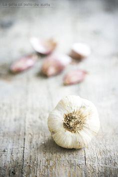 Garlic | La gatta col piatto che scotta
