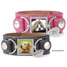 DB1259 - Dog Beds, Dog Harnesses and Collars, Dog Clothes and Gifts for Dog Lovers | In The Company Of Dogs