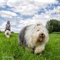 follow Jane #rheaenlisa