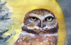 Bird Painting Burrowing Owl Watercolor by morningmoonstudio, $50.00