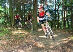 Some advanced mountain biking trails in Turkey Point, ON. Mountain Bike Trails, Trail Maps, Turkey, Hiking, Bicycle, Walks, Bicycle Kick, Bike, Bicycles