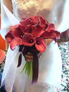 Love Flowers, Colorful Flowers, Wedding Colors, Wedding Flowers, Wedding Doves, Bouquet Images, Wedding Gallery, Floral Crown, Color Of The Year