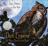 """""""Dark Emperor and Other Poems of the Night"""" by Joyce Sidman. A collection of poems that celebrates the wonder, mystery, and danger of the night and describes the many things that hide in the dark. Newbery Award, Newbery Medal, American Literature, Children's Literature, Poetry Books For Kids, Poetry Unit, Kid Books, National Poetry Month, Night Book"""