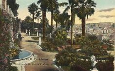 Jardim de S. Pedro de Alcântara | 1912 Palm tree are gone now but the view over #Lisbon is always timeless.