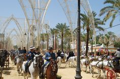 Learn Spanish and love the horses of andalucia. www.lajanda.org