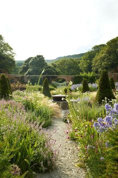 Lay a Gravel Path in Country Garden Design Ideas - how to a create a well-planned herbaceous border and farmhouse or cottage look, ideas for gardens both big and small. Gravel Path, Gravel Garden, Herb Garden, Garden Paths, Vegetable Garden, Cottage Garden Plants, Cottage Gardens, Country Landscaping, Garden Landscaping