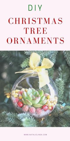Make these beautiful DIY Christmas tree ornaments by using live succulents from your garden! They're a pretty and fun Christmas craft to make during the Holiday season and they look gorgeous hanging on the tree! Christmas Crafts To Make, Christmas Garden, Christmas Sewing, Homemade Christmas Gifts, Diy Christmas Ornaments, How To Make Ornaments, Christmas Fun, Christmas Decorations, Christmas Kitchen