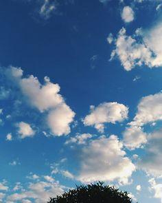 Porque o céu é tão lindo? Sou tão apaixonada  Gratidão sempre por tanta beleza, valeu Deus ........#céu #sky #clouds #nuvens #bluetheme #zenfone3 #zenfonebr #instamood #junewg #inewg #soubgs #aesthetic #gioraposobd #vscobr #vscophoto #photography #photooftheday #inxtalove