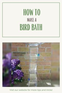 Take a look at this eye-catching DIY bird bath idea. Not only will in turn your garden into a backyard oasis but it will attract several species of wild birds. Did you know more birds will be attracted to a bird bath than they will to a bird feeder? That being said, let's get started a make a homemade bird bath. #BirdWatching #BirdBaths #Garden #Birds #DIY #Backyard Feeding Birds In Winter, Diy Bird Bath, Garden Birds, Bird Baths, Birdwatching, Wild Birds, Bird Feeders, Oasis, Backyard