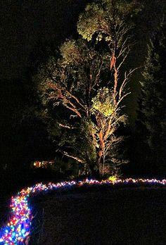 Tall Clover Farm's Christmas lights, Vashon Island