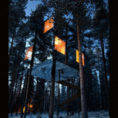 This is one of the coolest modern hotel ... Tree Hotel /The Mirror Cube Tham…