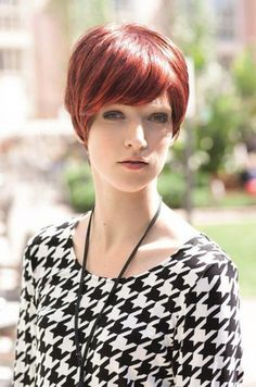 Alexa http://cysterwigs.com/pages/cysterwigs-import-specialty-services