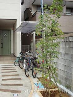 植栽 庭木 常緑樹 常緑ヤマボウシ Small Backyard Landscaping, Bike Storage, Bicycle, Exterior, House Design, Landscape, Plants, Home, Decoration