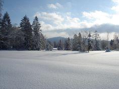Snow Stock 1 by Solanaceae85 on DeviantArt
