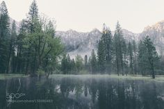 Smoke & Mirrors by KdKuiper Nature Photography #InfluentialLime