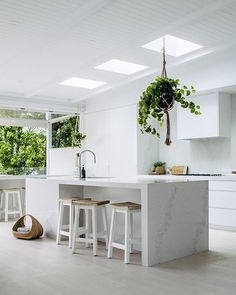 To improve the interior of your home, you may want to consider doing a kitchen remodeling project. This is the room in your home where the family tends to spend the most time together. If you have not upgraded your kitchen since you purchased the home,. White Kitchen Interior, Green Interior Design, Home Decor Kitchen, Interior Design Kitchen, New Kitchen, Home Kitchens, Kitchen Ideas, Kitchen Plants, Kitchen White