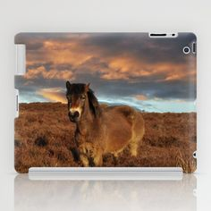 Horse on the moors iPad Case by Alexia Miles photography - $60.00 Cute Ipad Cases, Horses, Phone, Photography, Photograph, Telephone, Horse, Photo Shoot, Mobile Phones