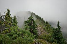 Evans Peak in Golden Ears Provincial Park. #hiking