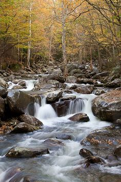Little Pigeon River - Great Smoky Mountain National Park, Tennessee