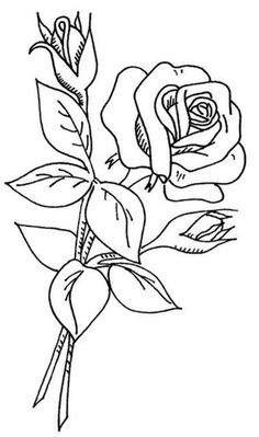 Stencils of roses for decoration