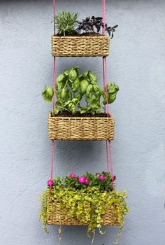 Recycle Reuse Renew Mother Earth Projects: How to make a HANGING BASKET GARDEN