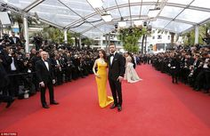 Crowd-pleasers: The pair delighted countless film fans as they posed for the world's media...