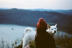 adventure buddy