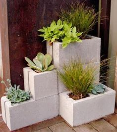 DIY Concrete Block Planters - Anna Things and Thoughts