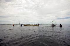 Paredon, Chiapas, Mexico  http://static3.demotix.com/sites/default/files/imagecache/a_scale_large/1200-9/photos/1339589401-the-net-fishermen-of-paredon-bay--tonala_1272939.jpg