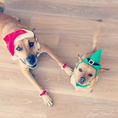 santa and her elf!