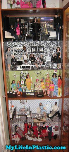 https://flic.kr/p/k3NuQ4   MyLifeInPlastic.com Doll Diorama Cabinets of Wonder   Mandatory Credit: Photo by Michael Williams/MyLifeInPlastic.com  Mattel vintage and collectible Barbie Ken Midge Skipper Alan fashion dolls Fashion Royalty Poppy Parker Misaki FR Nippon dioramas dollhouse scenes cabinets - these are my cabinets from June 2010 in my former Park Slope, Brooklyn, apartment.