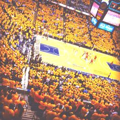 pacer nation