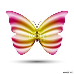 abstract vector butterfly isolated on white background - Buy this stock vector and explore similar vectors at Adobe Stock Tinkerbell, Butterflies, Brooch, Abstract, Art, Summary, Art Background, Brooches, Kunst