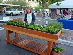This 2′ by 8′ Redwood Waist High Raised Bed is 6″ deep and great for salads, herbs and flowers (short roots).