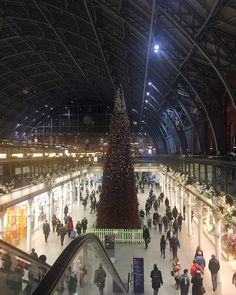 #Christmas & The #holidaysarecoming all around #London on my way home shot at the #station . Looking good out there & I know on 12/24 Im going to appreciate it ! #sap #erp #erp3 #technology #bigdata #AI #ML #IoT #recruit #job #makethemove #madebyme #motivation #inspire #businessowner #network #interview #recruiterlife #entrepreneur #tw #success #millionairemindset  #opportunity #keepgoing #like4like #career Big Data, My Way, Opportunity, Modeling, Entrepreneur, Like4like, Career, Interview, Success