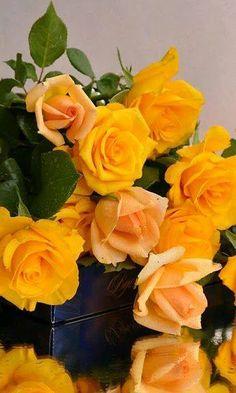 Güller ve çiçekler beni mutlu ediyor .
