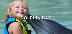 Dolphin Bay - Atlantis Dubai