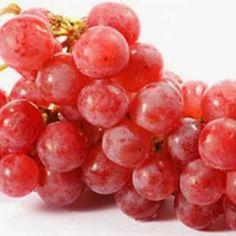 Khasiat dan manfaat Jeruk Nipis bagi Kesehatan , Jeruk bukan buah asing di dalam kehidupan manusia sejak ribuan tahun lalu. Walau dari 1...
