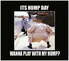 It's wednesday hump day and people are searching for happy hump memes for wednesday motivation. Check out the top 22 funny and sexy hump day memes below. Happy Hump Day Meme, Funny Hump Day Memes, Wednesday Hump Day, Wednesday Memes, Hump Day Humor, Wednesday Motivation, Funny Happy, Funny Quotes, Hump Day Images