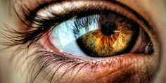 Your Eye Color reveals Information about your Personality : Human ...