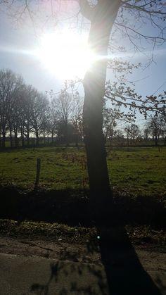 Landschaftsfotogarafie Ostfriesland By Mella🦄