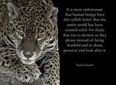 It is most unfortunate ...