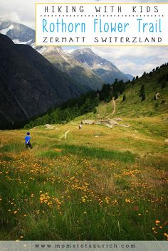 Beautiful alpine hike for family through wildflowers. Hike ends at a great…