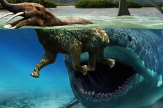 12 Weird Prehistoric Creatures That Will Make You Glad You're Alive Today.  #Magalodon  #shark   @Hank Gray