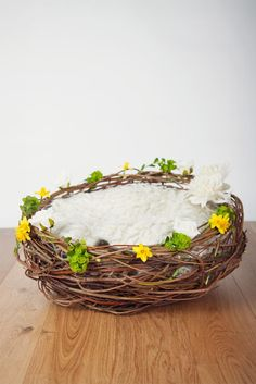 Easter digital backdrop, a digital prop newborn nest with daffodils by AuraDigitalBackdrops on Etsy