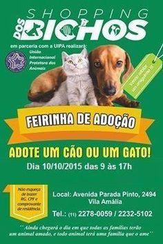 BONDE DA BARDOT: SP: Campanha de adoção de cães e gatos da UIPA, na Vila Amália (10/10)